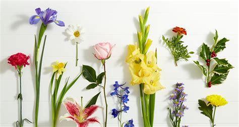 fiori regalo compleanno fiori compleanno fiori per cerimonie fiori per
