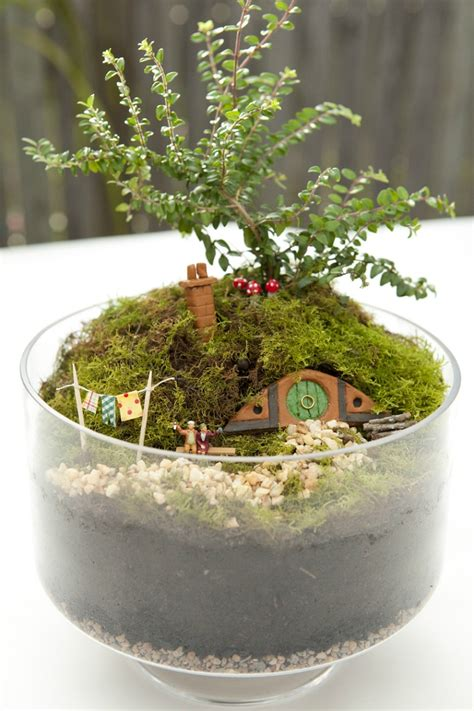 giardino in miniatura giardini in miniatura ecco un modo particolare per