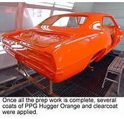 Hugger Orange  And White Pinterest Muscles