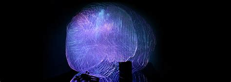 light up your brain brainlight an interactive brain that lights up your mind