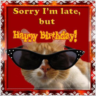 Sorry I?m Late Birthday Cat! Free Belated Birthday Wishes