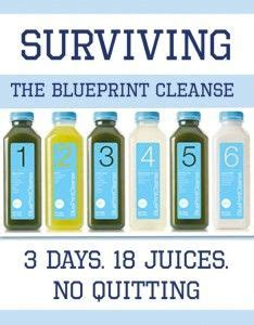 18 Day Detox Diet by 25 Best Ideas About Blueprint Cleanse On