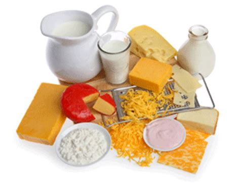 The Best Diet Milk And Cheese Department by Milk And Dairy Facts Nutrients Myths Types Of Milk
