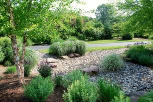 Backyard Shade Solutions Rain Gardens Stormwater Management And Drainage Solutions