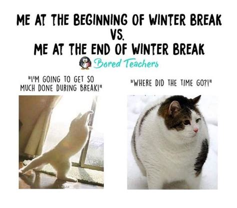 winter break teacher memes thatll   die