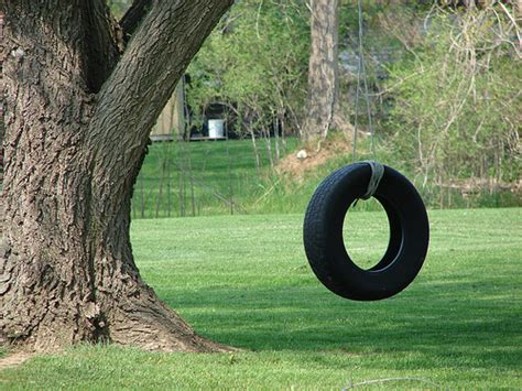 tire swings for kids photo