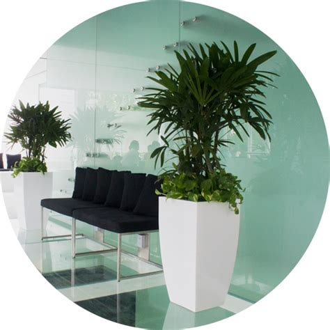large white indoor planter fiberglass planters fiberglass cement planters tau