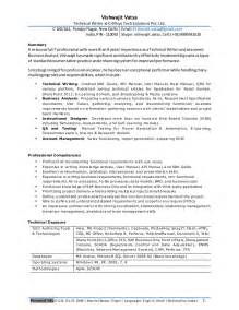 professional resume for experienced business analyst