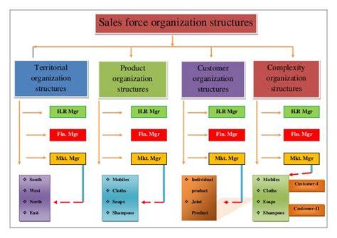 sle of organization chart sales organization structure image