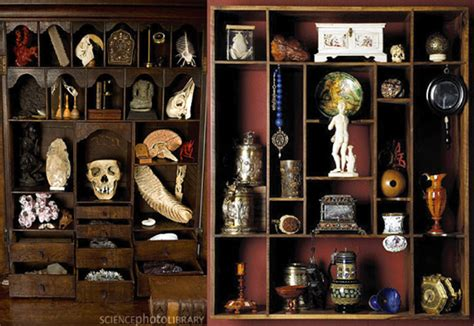 Cabinets De Curiosité by Cabinets Of Curiosities 37 Images Church Of
