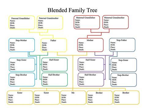 family tree with cousins template family tree template with cousins invitation template