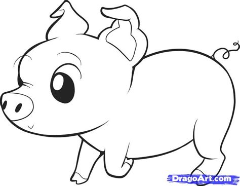 Pig Outline by Free Coloring Pages Of Guinea Drawing