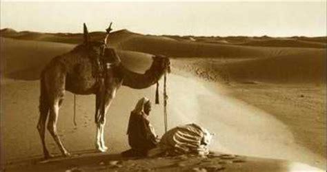kisah qais  laila laila majnun penyejuk hati