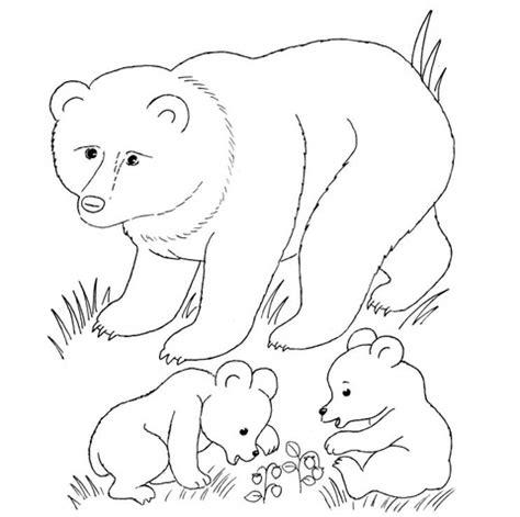 coloring page bear cub ausmalbild b 228 renmutter und b 228 renjunge ausmalbilder