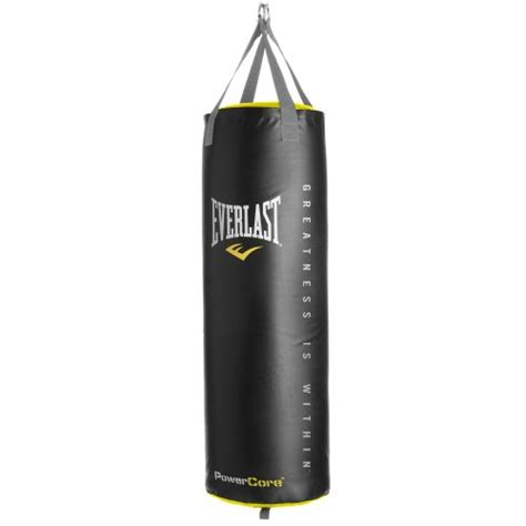 everlast 174 powercore 100 lb synthetic leather heavy bag
