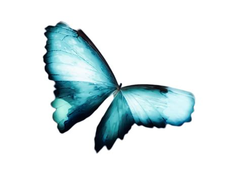 glowing soft butterfly in teal blues iphone 6 for sale by joyce morrill