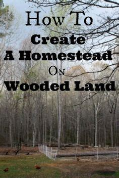 design your ideal homestead homestead homesteads farming and gardens ideal 10 acre homestead layout copies of all our master plans are available in my book 5