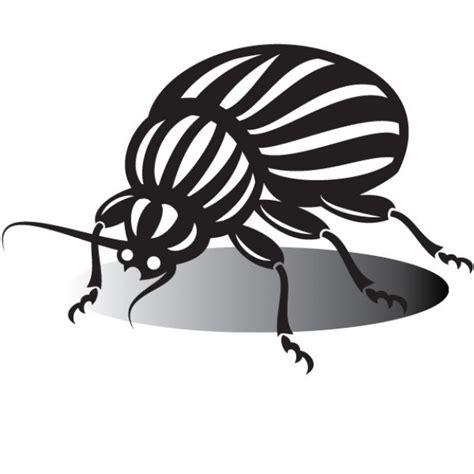 imagenes para perfil blanco y negro dibujo escarabajo en blanco y negro descargar vectores