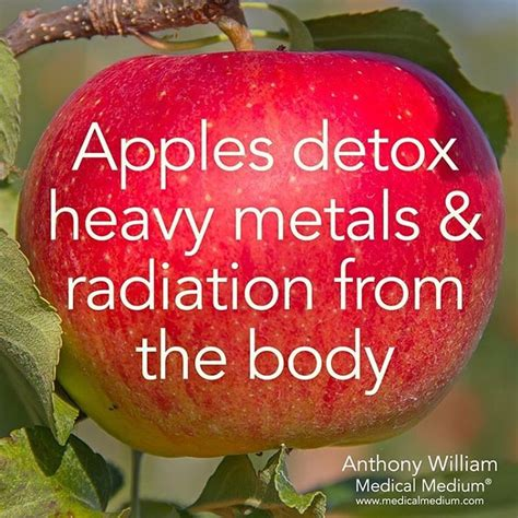 Ways To Detox From X Rays by 25 Best Ideas About Medium Well On Medium