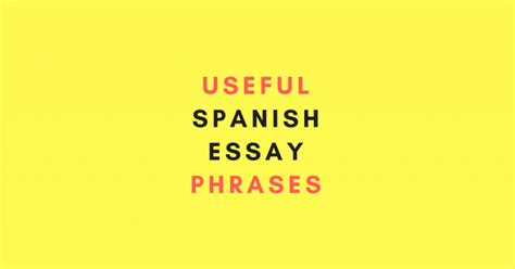 Useful Phrases For Writing Essays by 40 Useful Essay Phrases My Daily