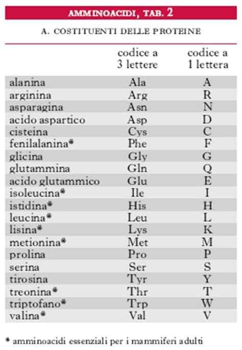 formazioni di cavalleria 9 lettere amminoacidi nell enciclopedia treccani