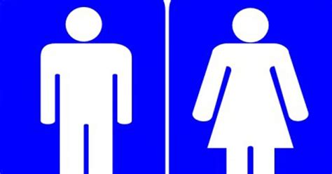 baffled brits  pick  wrong loo    read foreign languages mirror