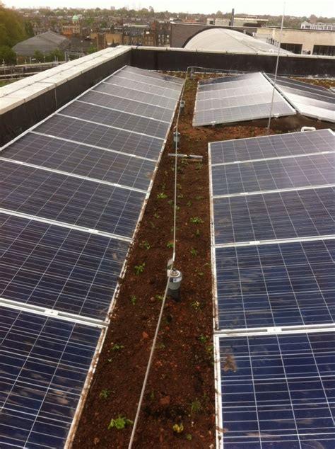 slide together roof panels sedum and wildflower green roof finsbury park sky