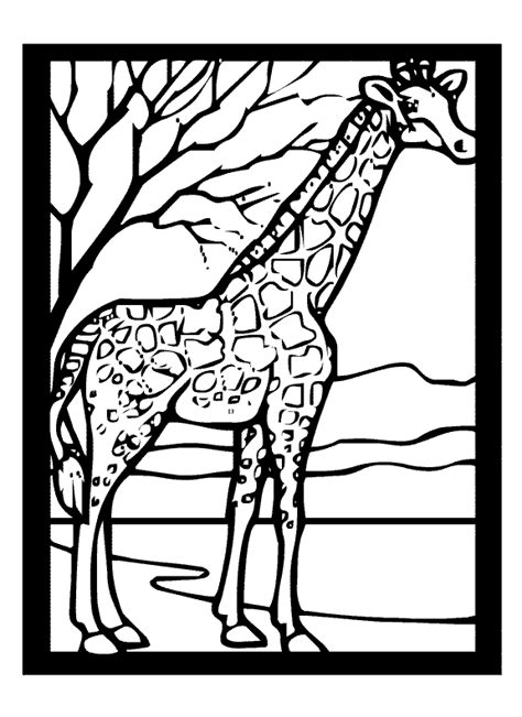 giraffe coloring page for adults giraffe coloring pages for adults coloring pages