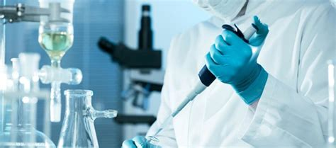 ingegneria biomedica sedi cosa fa l ingegnere biomedico un focus su questa