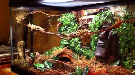 ball python terrarium d 233 cor ideas scalies pinterest terrarium ideas stonehenge and ideas