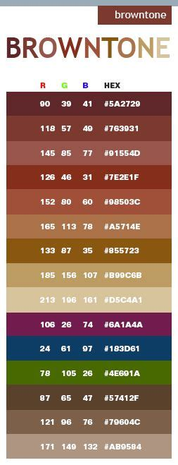 color code for brown 25 best ideas about brown color schemes on