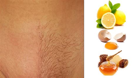 permanently remove pubic hair how to remove pubic hair permanently home remedies for