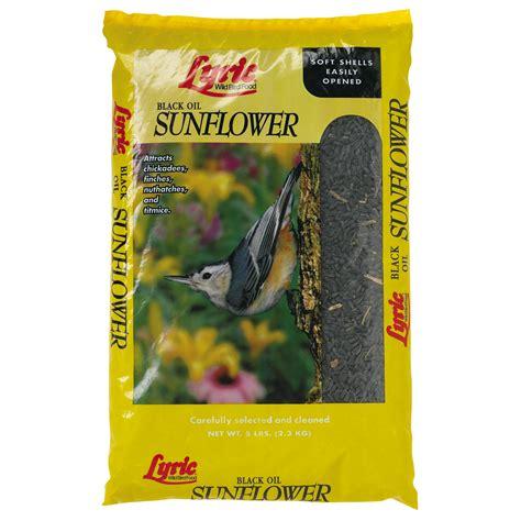 lyric black sunflower seed cardinal outdoor decor kmart