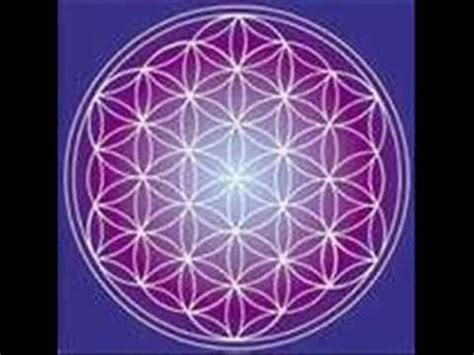 il fiore della vita significato l antico segreto fiore della vita seminario napoli