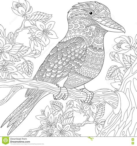 kookaburra coloring page free zentangle stylized kookaburra bird stock vector image