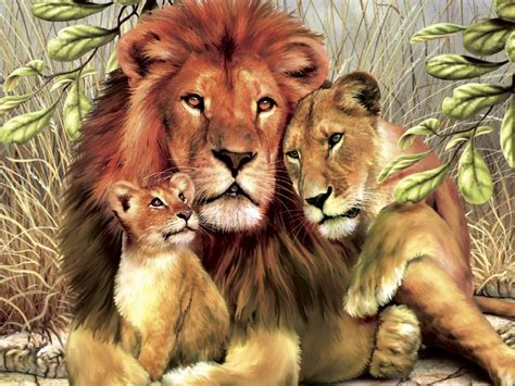 lion family hugs  love wild animals hd hd background