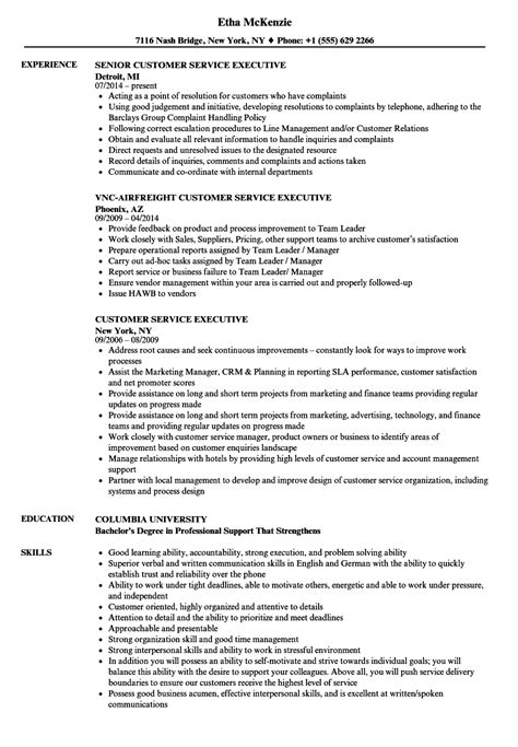 resume format for customer support executive customer service executive resume sles velvet