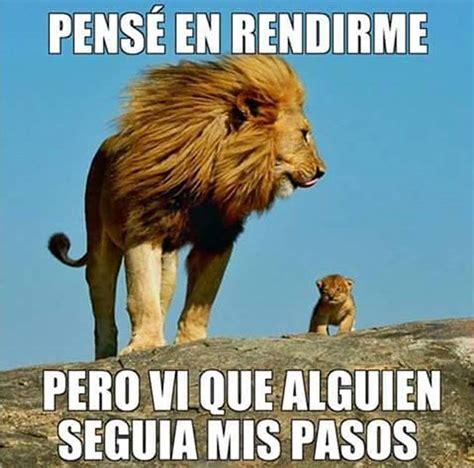 imagenes de leones con frases cristianas im 225 genes para el whats