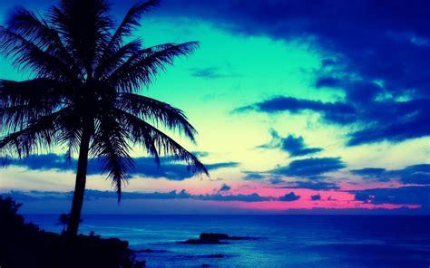 imagenes de paisajes tropicales galer 237 a de im 225 genes wallpapers de paisajes tropicales