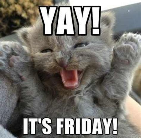 Its Friday Memes 18 - best 25 happy friday meme ideas on pinterest happy