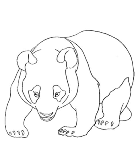 cute panda bear coloring pages for kids gt gt disney coloring