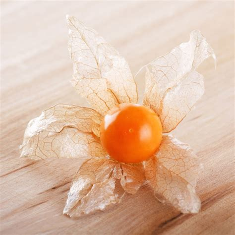 1 fruit in the world physalis health benefits of rarest and fruits of