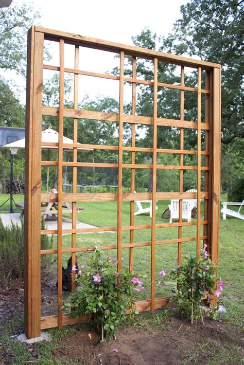 build  modern diy garden trellis southern revival