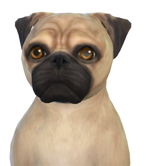 sims 4 pug rosie the pug at enchanting essence 187 sims 4 updates