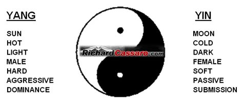 what does the yin yang symbolize sun male moon female archives richard cassaro