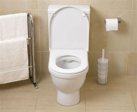bathroom fixing how to repair common toilet problems