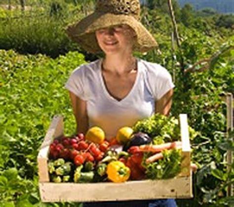 Backyard Vegetable Garden   Eartheasy.com Solutions for