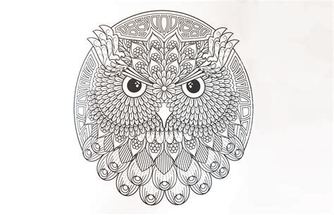 mandala coloring pages owl animal mandala coloring pages owl