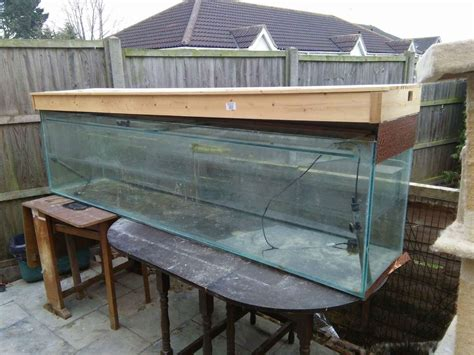 Large Fish Tank For Sale Colchester Essex Pets4homes
