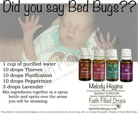essential oils bed bugs 132 best images about young living essential oil on